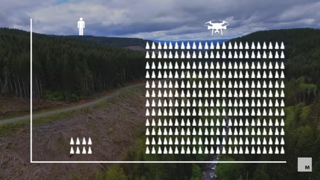 Comparison of tree planting between humans and drones